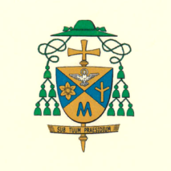 Pastýřský list otce biskupa Jana Vokála